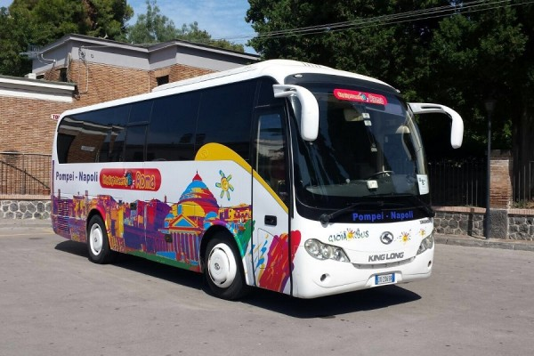 Luxury mini-coaches operated by City Sightseeing Roma | get tickets at CityXplora