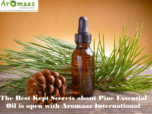 Pure Essential Oil Manufacturers, Pure Essential Oil