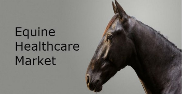 Equine Healthcare Market Insights and Industry Forecast till 2025 ...