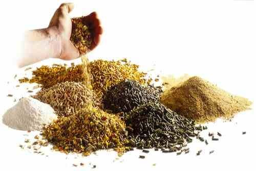Animal Feed Premix Manufacturers