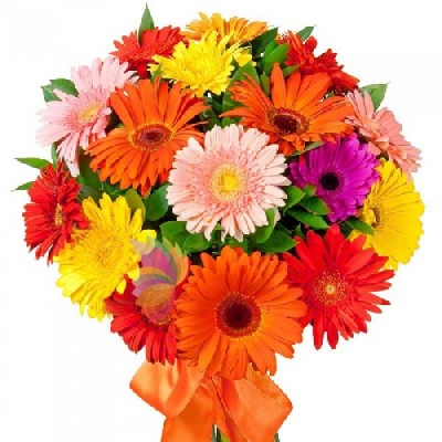 Surprise a loved one and send flowers to Jalna and Jalgaon