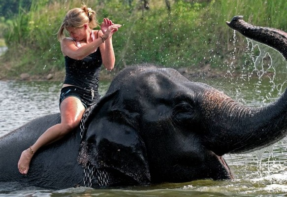 Tourist bathing with elephant in Chitwan national park.